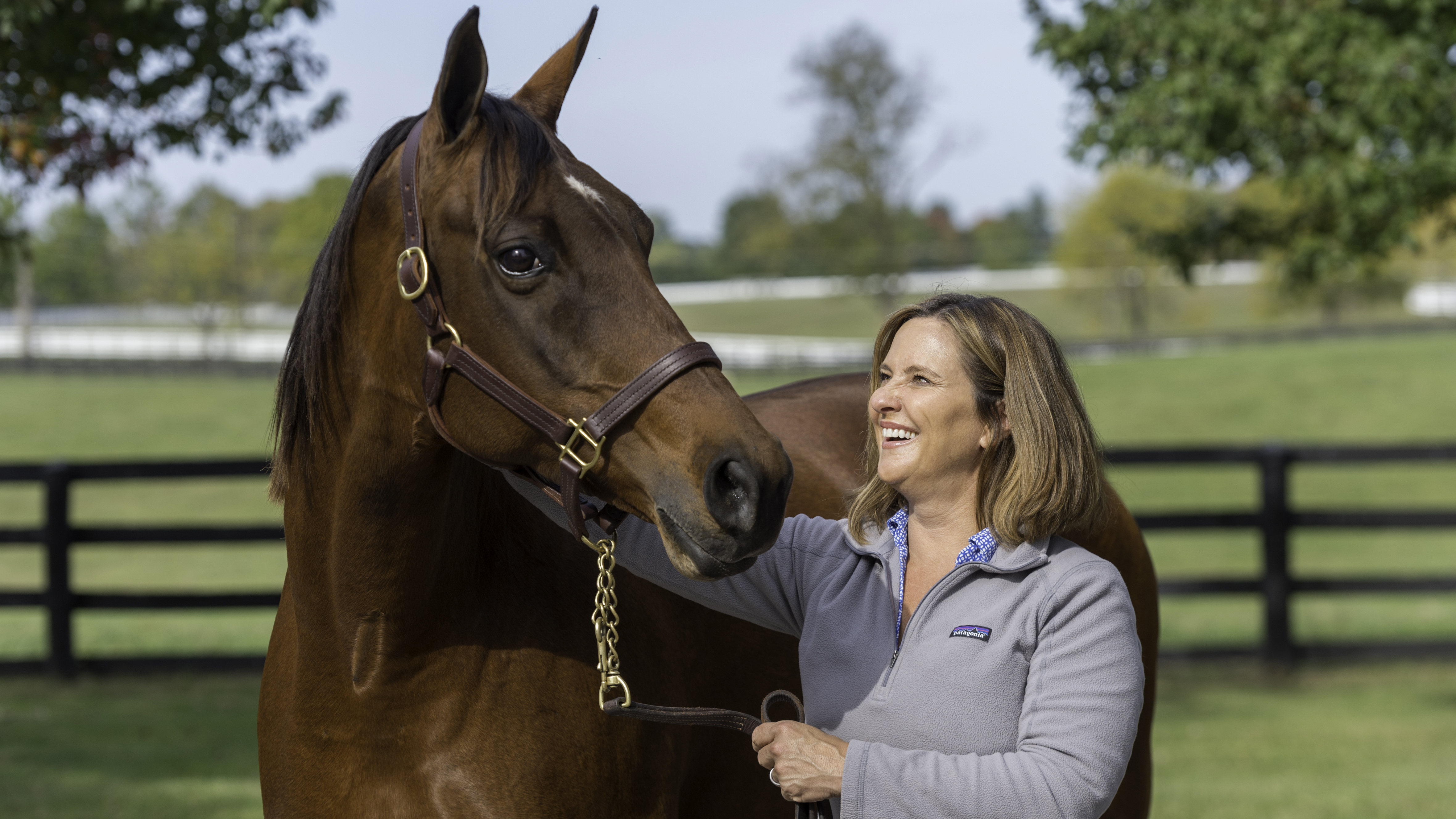 Horses Saved Meg Levy After Tragedy Now She Helps Save Them